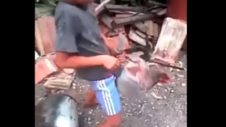 Küçük sikli çocuk tavuğu götten sikti